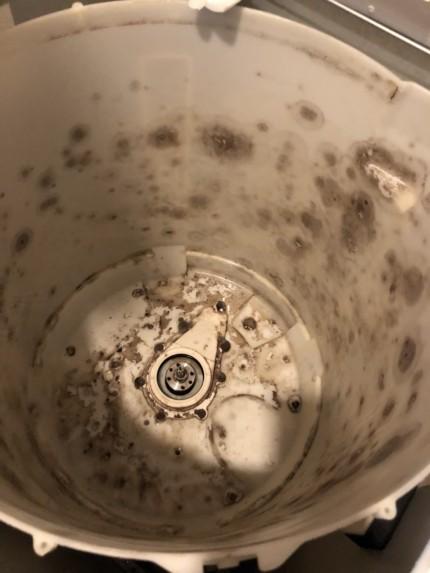 洗濯槽クリーニング_5